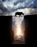 Rhino over the abyss. Rhino silhouette crossing over the abyss by the rope bridge at sunset overcast sky stock photo