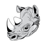 Rhino`s head. Detail of rhino`s head. Vector illustration on white background stock illustration