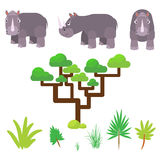 Rhino and savannah plants set cartoon vector illustration on white. Royalty Free Stock Photography