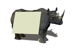 Rhino with sign Royalty Free Stock Images