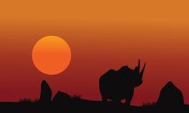Rhino silhouette walking in savanna Royalty Free Stock Images