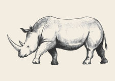 Rhino Sketch Royalty Free Stock Images