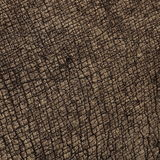 Rhino Skin Textures Stock Images