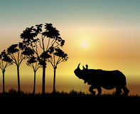 Rhino at Sunrise. Illustration of rhinoceros walking at sunrise Royalty Free Stock Photos