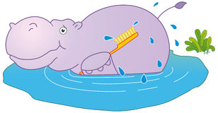 Rhino taking bath Stock Photography