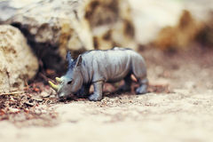 Rhino toy in nature Royalty Free Stock Photography