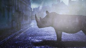 Rhino Twilight Streets 4K