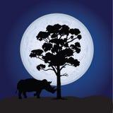 Rhino vector on a moonlight Royalty Free Stock Photos