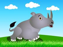 Rhino in the wild Stock Photo