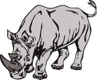 Rhinocéros Photographie stock