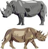 Rhinocéros blancs et rhinocéros noirs Photos libres de droits