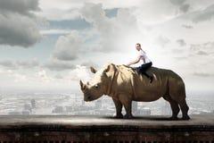 Rhinocéros de sellage de femme image stock