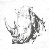 Rhinocéros principal dans l'art de la gravure Photographie stock
