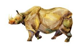Rhinocéros sur le fond blanc Photographie stock libre de droits