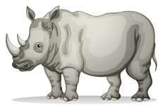 Rhinoceros royalty free illustration