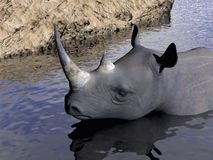 Rhinoceros bath - 3D render Royalty Free Stock Photos
