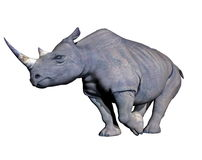 Rhinoceros charging Stock Photo