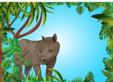 Rhinoceros in the jungle, floral frame stock photos