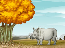 A rhinoceros near the tree Stock Photo