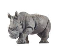 Rhinoceros rhino sculpture Royalty Free Stock Photography