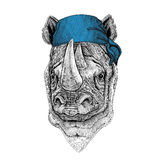 Rhinoceros, rhino Wild animal wearing bandana or kerchief or bandanna Image for Pirate Seaman Sailor Biker Motorcycle Royalty Free Stock Photography