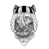 Rhinoceros, rhino Wild animal wearing rugby helmet Sport illustration Stock Image