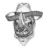 Rhinoceros, rhino Wild animal wearing sombrero Mexico Fiesta Mexican party illustration Wild west. Wild animal wearing sombrero Mexico Fiesta Mexican party Royalty Free Stock Images