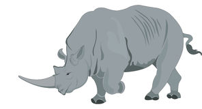 Rhinoceros or Rhinocerotidae, illustration Stock Photography