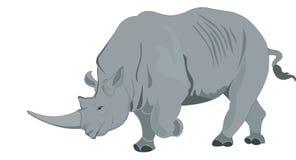 Rhinoceros or Rhinocerotidae, illustration Stock Photography