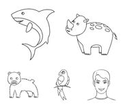 Rhinoceros, shark, parrot, bear.Animal set collection icons in outline style vector symbol stock illustration web. Stock Photography