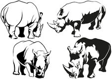 Rhinoceros Tattoo Drawings Stock Image