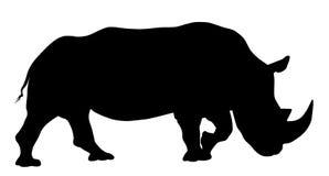 Rhinoceros. Vector illustration of rhinoceros silhouette Stock Images