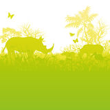 Rhinoceroses in the savannah Stock Photography