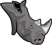 Rhinos głowa Zdjęcia Royalty Free