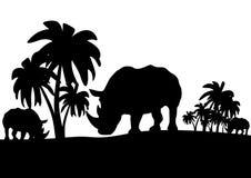 Rhinos in the savannah Stock Image