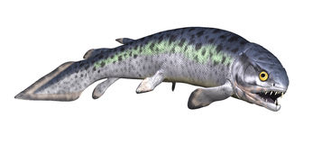 Rhizodus - prähistorischer Fisch 2 Stockfotografie