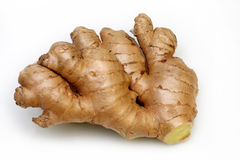 Rhizome of fresh ginger Royalty Free Stock Images