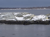 Rhode Island Wildlife Refuge Stock Foto