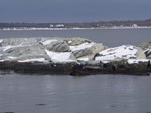 Rhode - wyspa rezerwat dzikiej przyrody Zdjęcie Stock