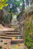 Rhodes. City park Rodini.Greece. Royalty Free Stock Photos