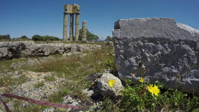 Rhodes  historical Apollo temple ruins columns in acropolis. 4K stock video footage