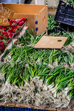 Rhodes market- Green onions Royalty Free Stock Photography