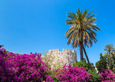 Rhodes old town. Medieval city of Rhodes, Greece Royalty Free Stock Images