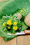 Rhodiola rosea with knife and a coil of rope on board Royalty Free Stock Photo