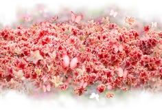 Rhododendron-Blumen-Knospen mit Schmetterlingen Lizenzfreie Stockfotos
