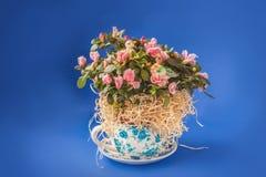 Rhododendron de floraison d'azalée avec des autocollants d'une paire de canard Photos stock