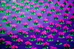 Rhododendronsimsii: den sjunde nationella staden spelar öppningscermonirepetition Arkivfoton