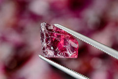 Rhodolite garnet Royalty Free Stock Photography