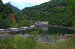 Mountain reservoir. Beautiful dry flowers,water reservoir on river Vacha in Southern Bulgaria Phodopes mountains .July 11th 2014 Royalty Free Stock Photo