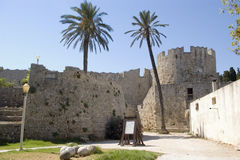 Rhodos Tower. Two palms in front of Rodos Tower Royalty Free Stock Photos